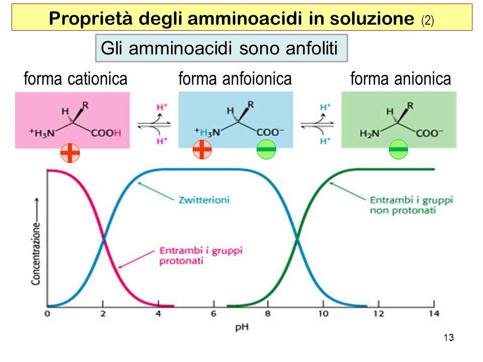 Proprietà degli amminoacidi in soluzione (2)