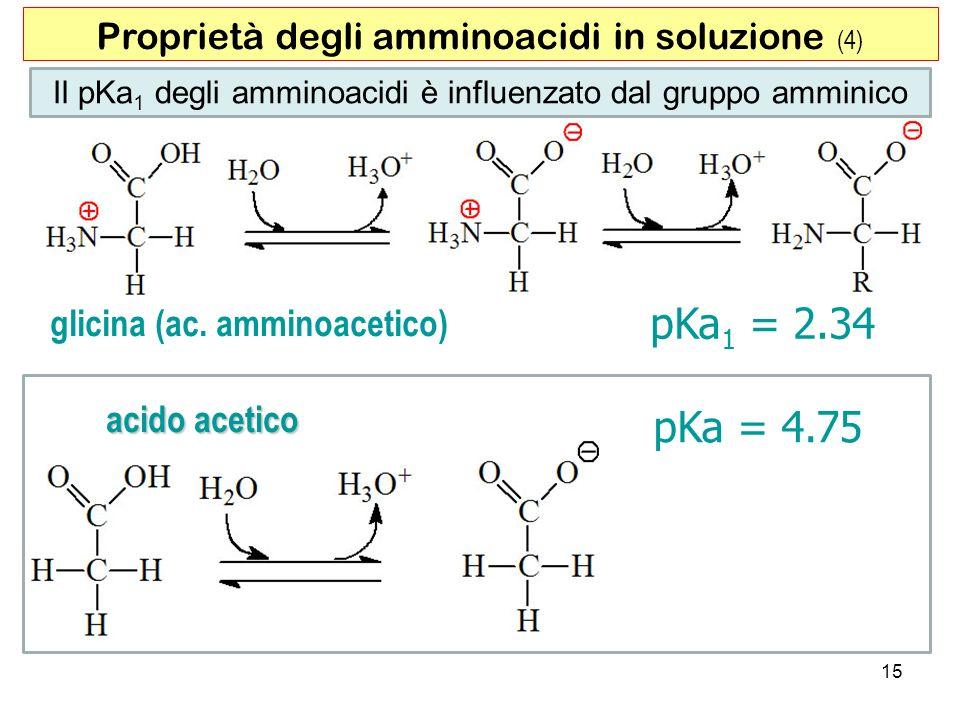 pKa1 = 2.34 pKa = 4.75 Proprietà degli amminoacidi in soluzione (4)