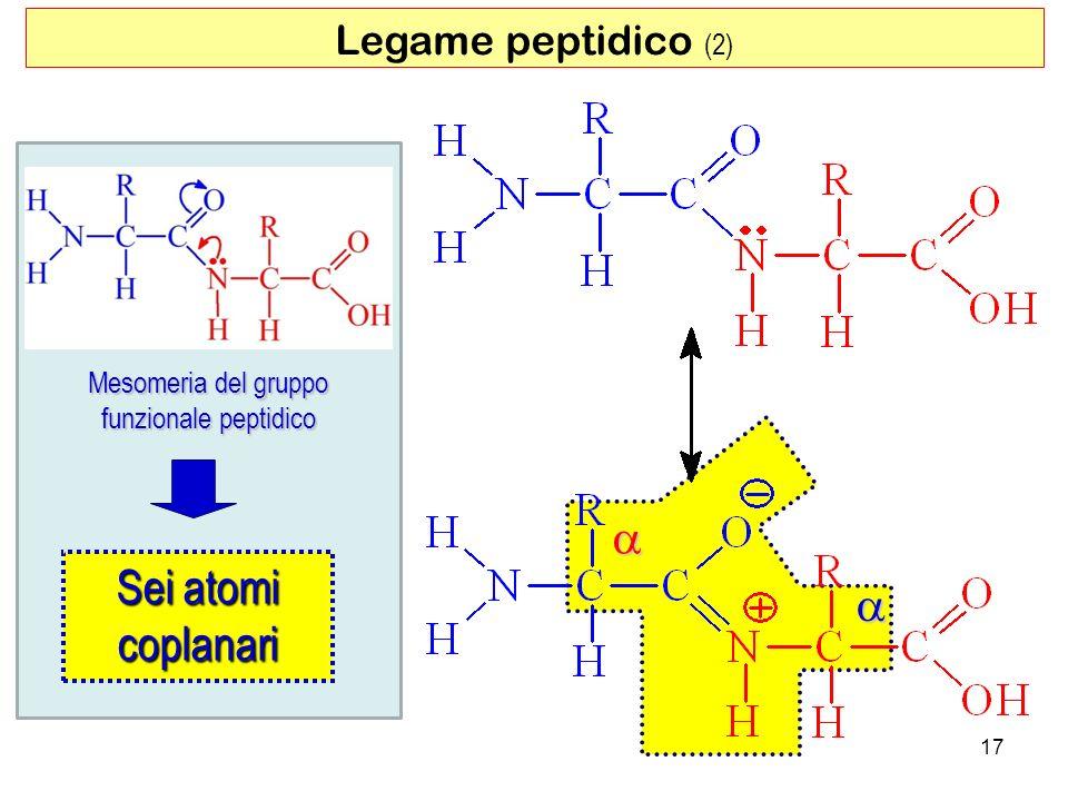 Mesomeria del gruppo funzionale peptidico