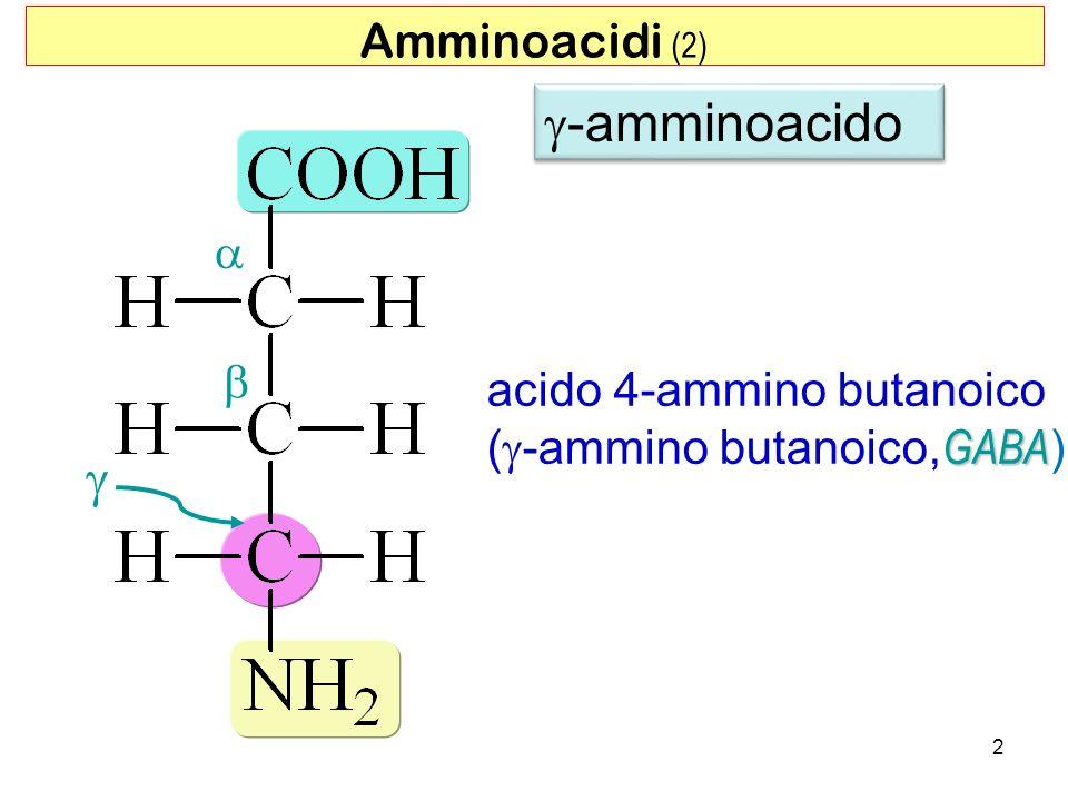 g-amminoacido g Amminoacidi (2) a b acido 4-ammino butanoico