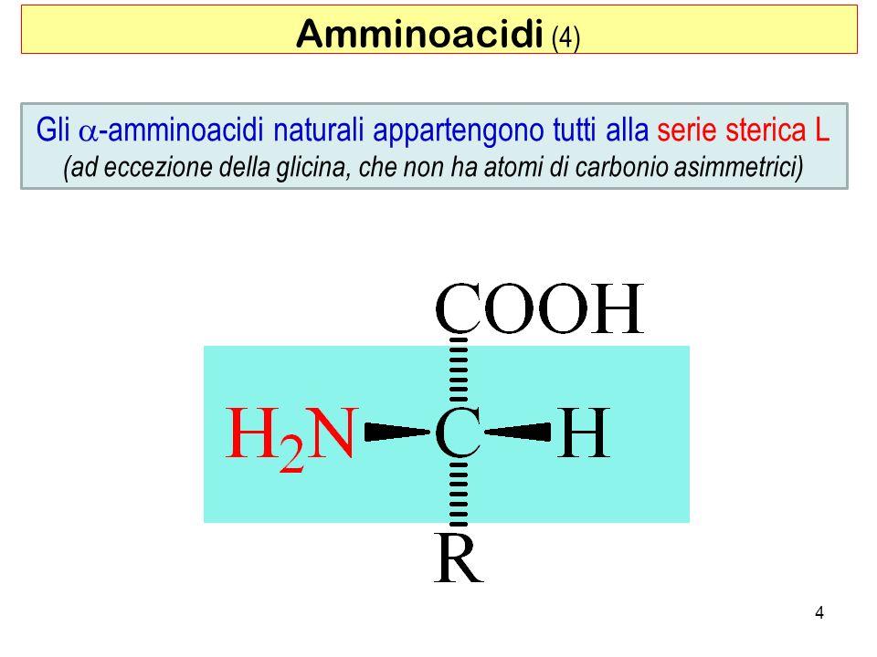 Amminoacidi (4) Gli a-amminoacidi naturali appartengono tutti alla serie sterica L.