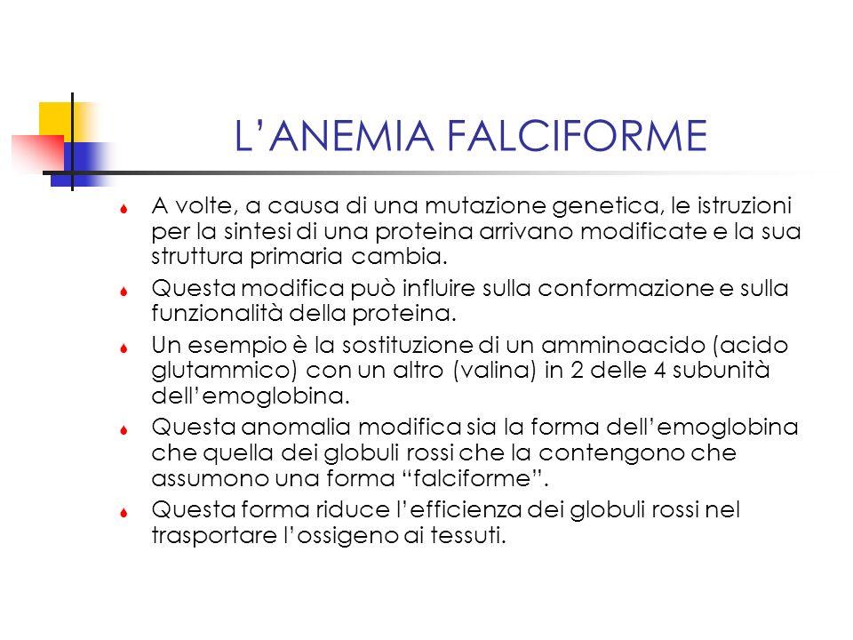 L'ANEMIA FALCIFORME
