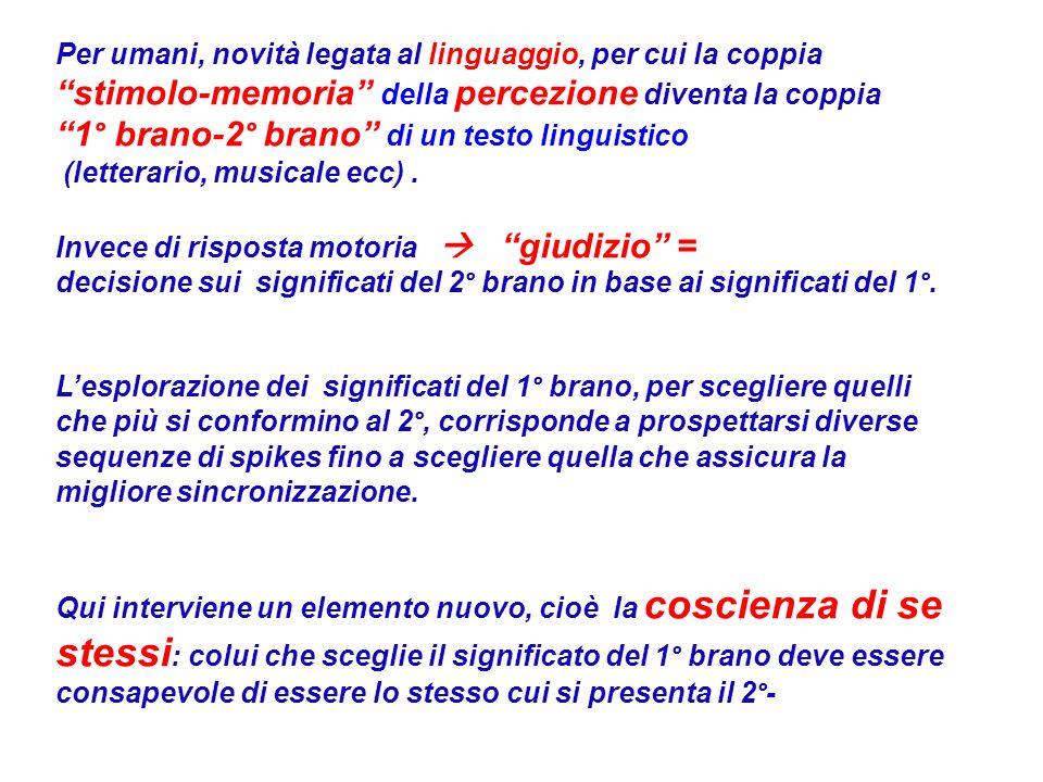 1° brano-2° brano di un testo linguistico
