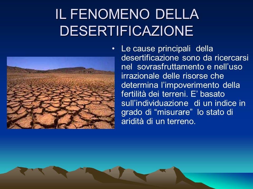 IL FENOMENO DELLA DESERTIFICAZIONE