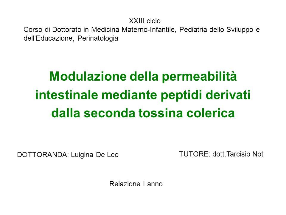 XXIII ciclo Corso di Dottorato in Medicina Materno-Infantile, Pediatria dello Sviluppo e dell'Educazione, Perinatologia.