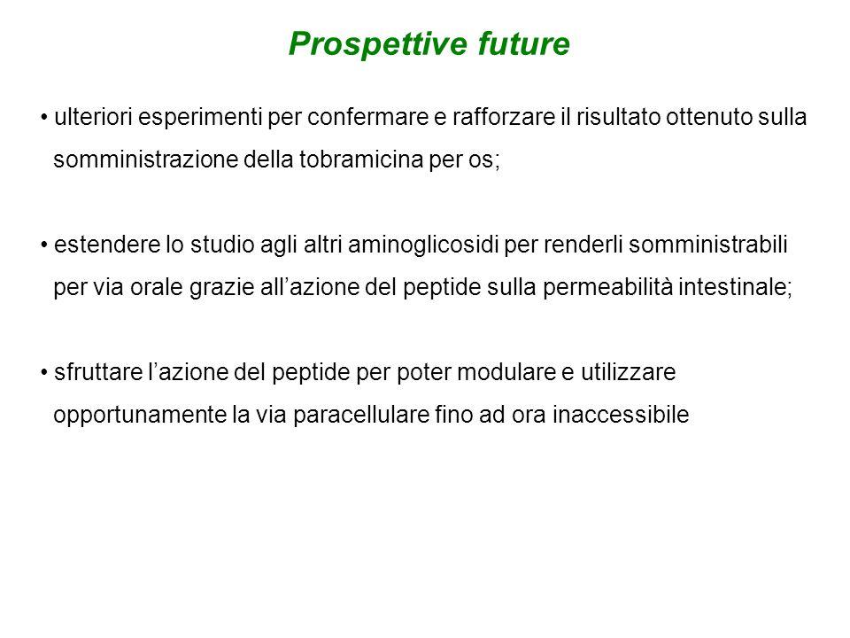 Prospettive future ulteriori esperimenti per confermare e rafforzare il risultato ottenuto sulla. somministrazione della tobramicina per os;