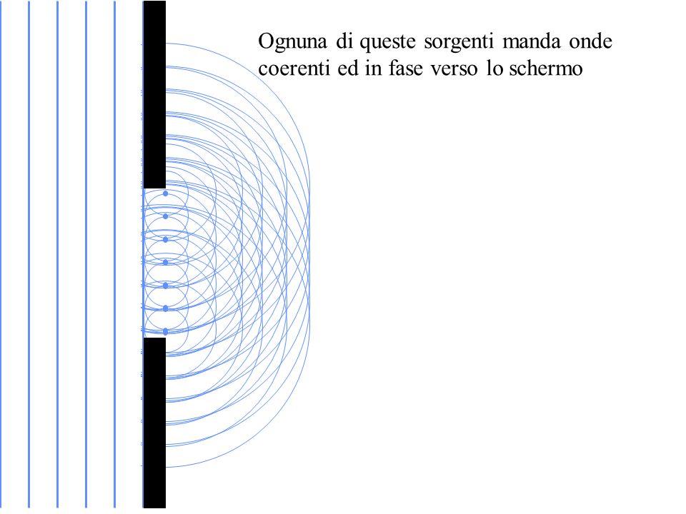 Ognuna di queste sorgenti manda onde coerenti ed in fase verso lo schermo