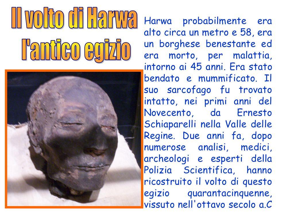 Il volto di Harwa l antico egizio