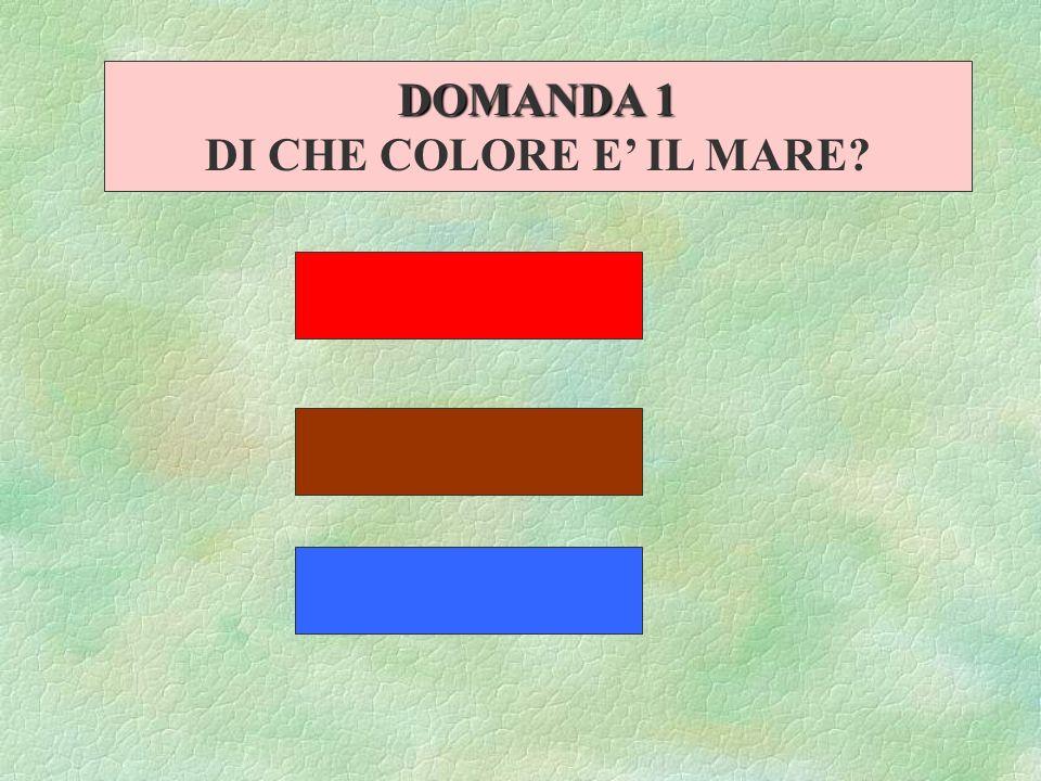 DOMANDA 1 DI CHE COLORE E' IL MARE