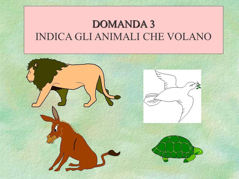 INDICA GLI ANIMALI CHE VOLANO