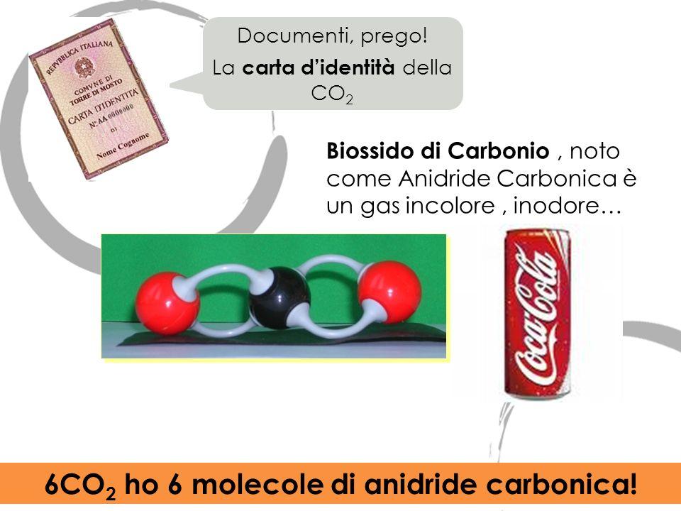 6CO2 ho 6 molecole di anidride carbonica!