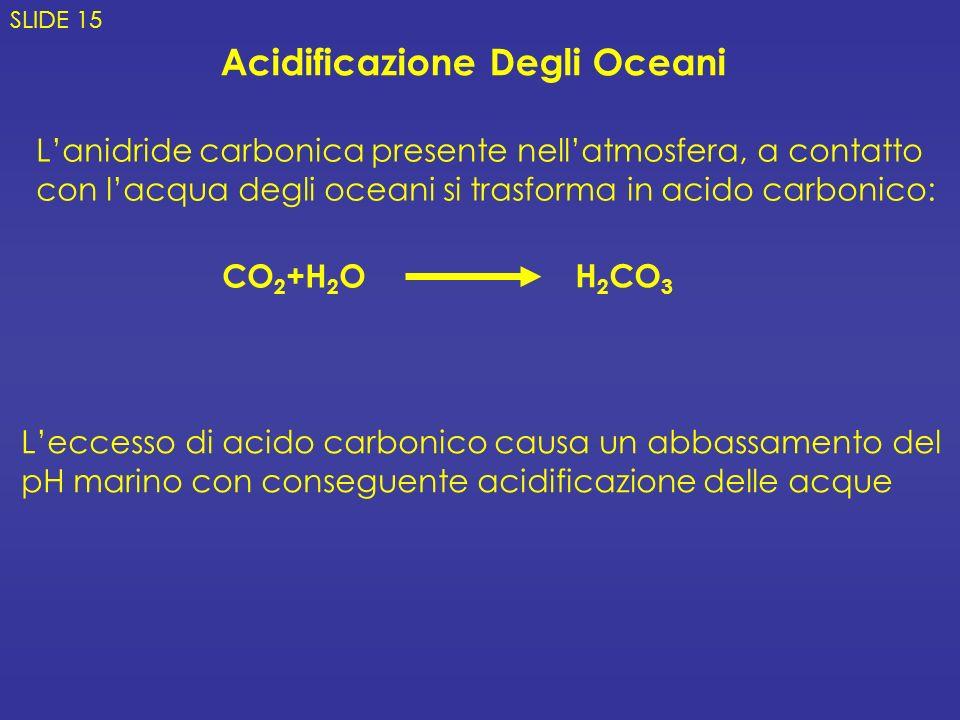 Acidificazione Degli Oceani