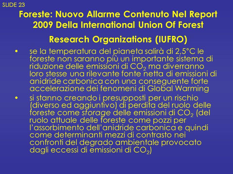 SLIDE 23 Foreste: Nuovo Allarme Contenuto Nel Report 2009 Della International Union Of Forest Research Organizations (IUFRO)