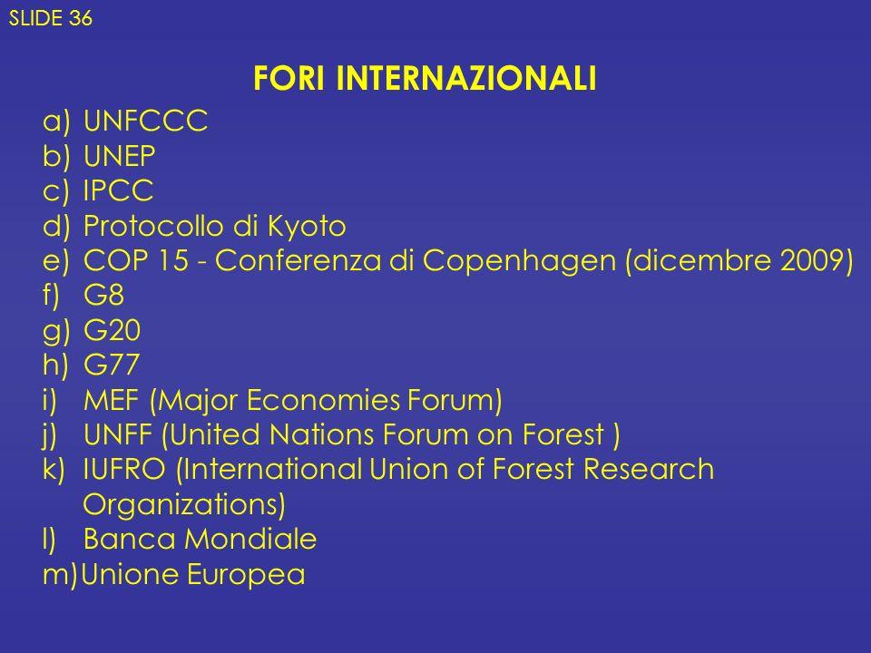 FORI INTERNAZIONALI UNFCCC UNEP IPCC Protocollo di Kyoto