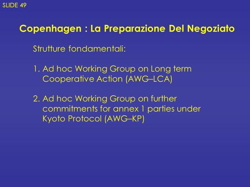 Copenhagen : La Preparazione Del Negoziato