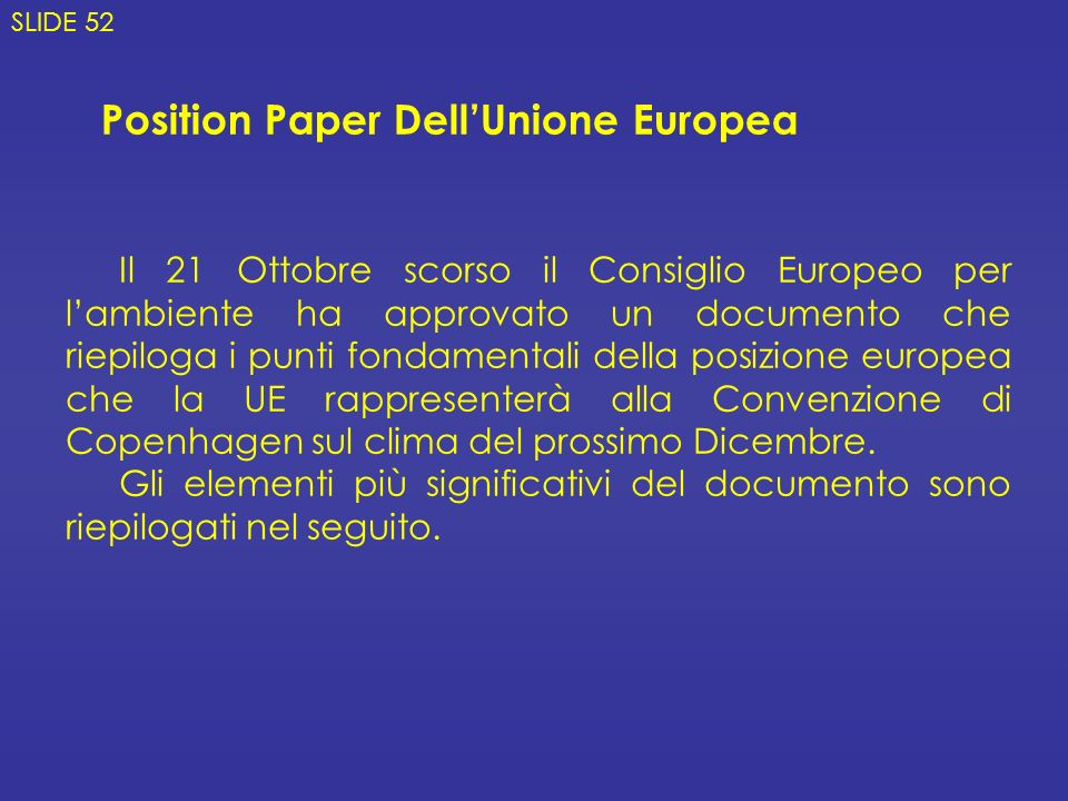 Position Paper Dell'Unione Europea