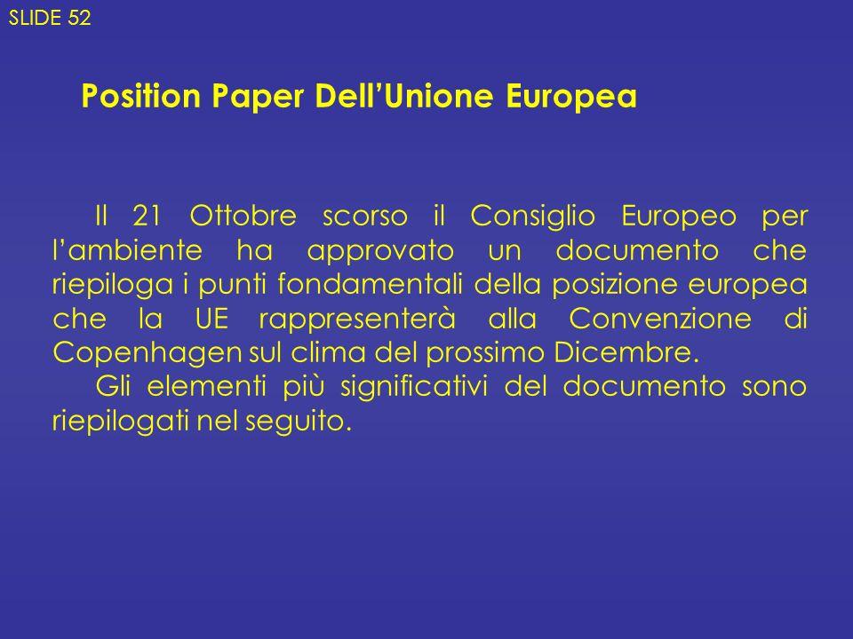 Position Paper Dell'Unione Europea
