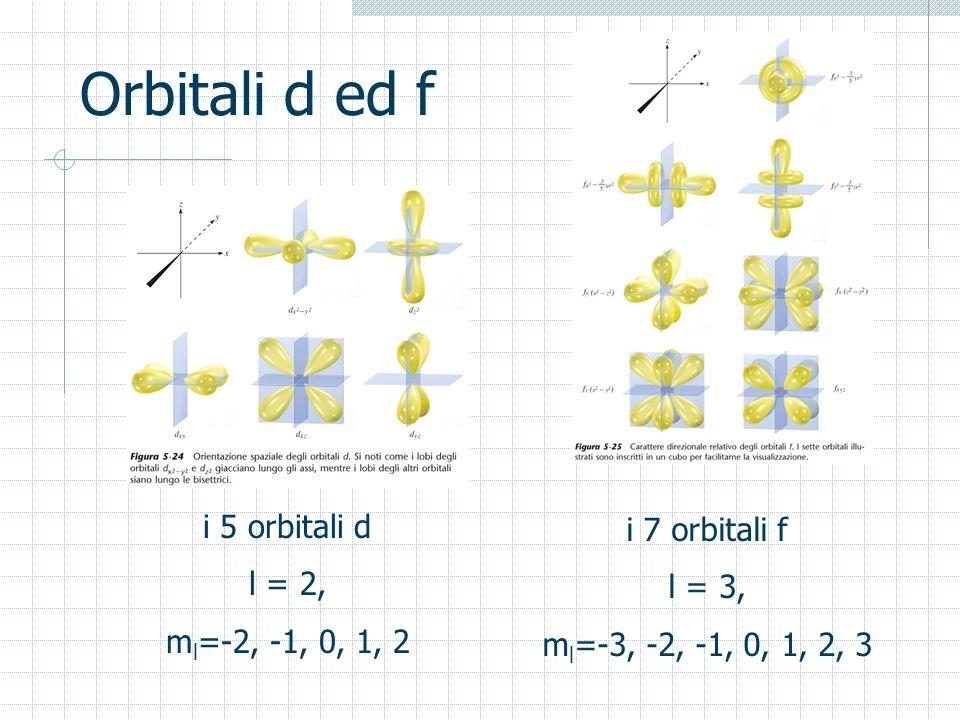 Orbitali d ed f i 5 orbitali d i 7 orbitali f l = 2, l = 3,