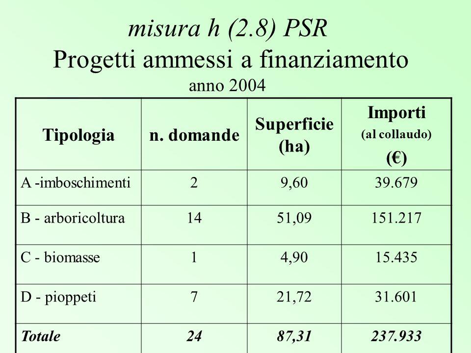 misura h (2.8) PSR Progetti ammessi a finanziamento anno 2004