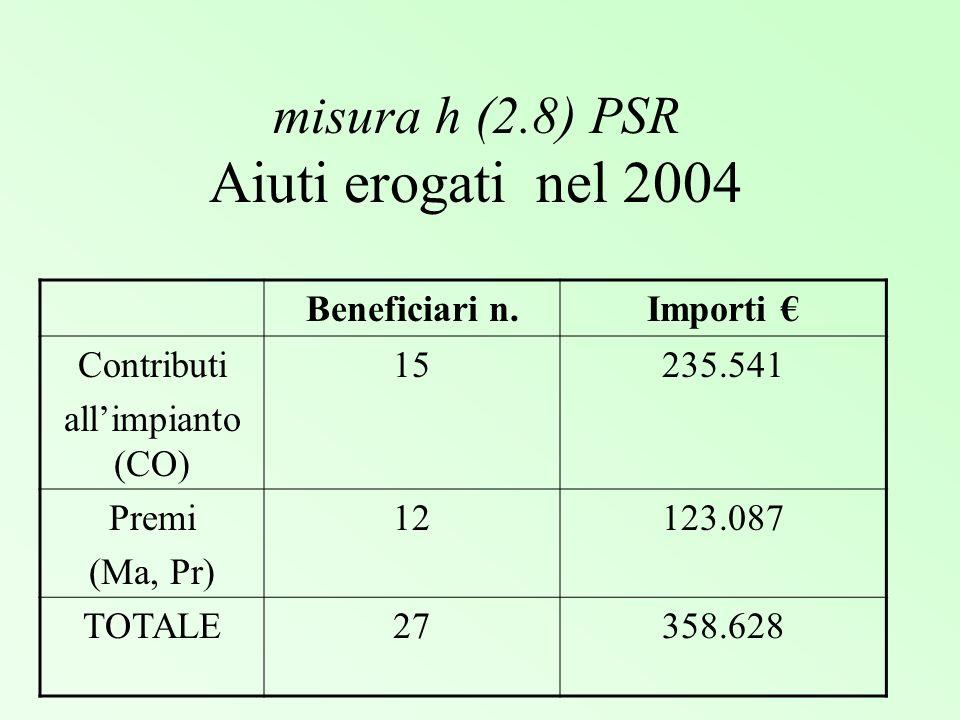 misura h (2.8) PSR Aiuti erogati nel 2004