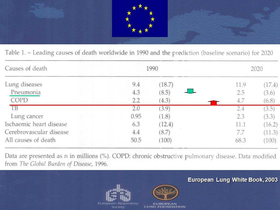 European Lung White Book, 2003