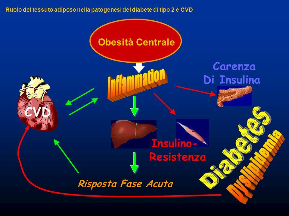 Inflammation Diabetes Dyslipidemia CVD Carenza Di Insulina Insulino-