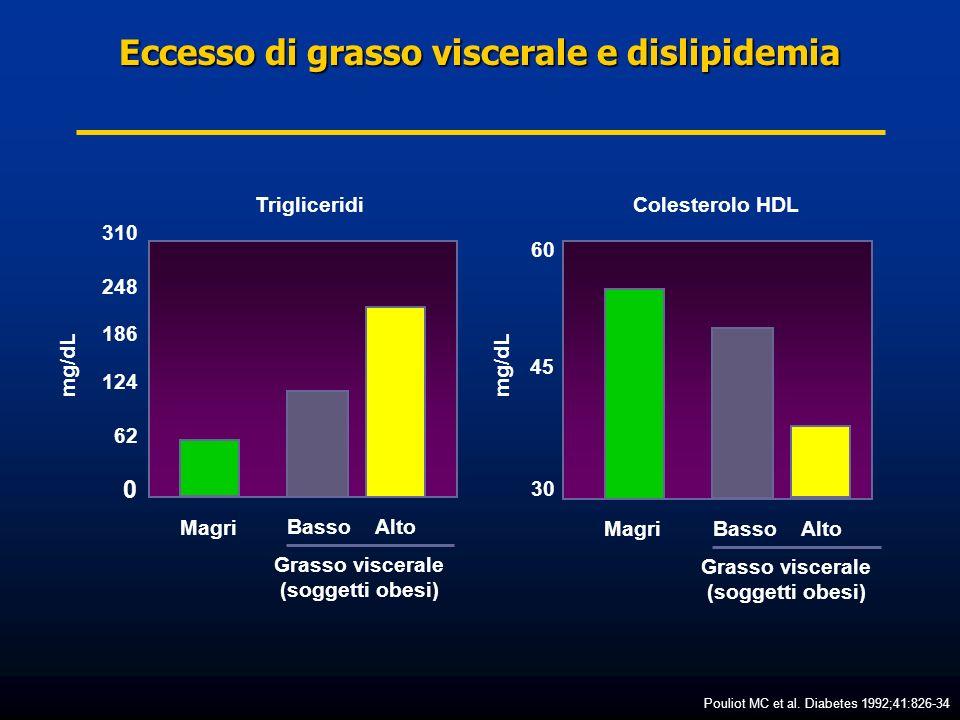 Eccesso di grasso viscerale e dislipidemia
