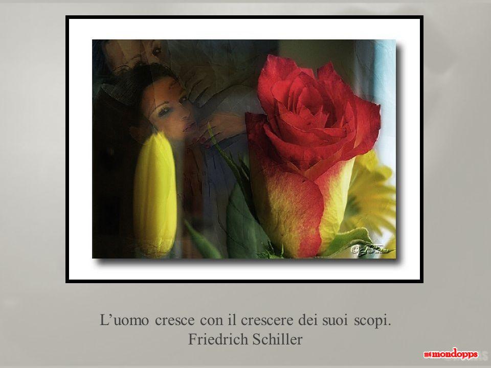 L'uomo cresce con il crescere dei suoi scopi. Friedrich Schiller