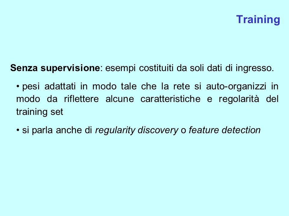 Training Senza supervisione: esempi costituiti da soli dati di ingresso.
