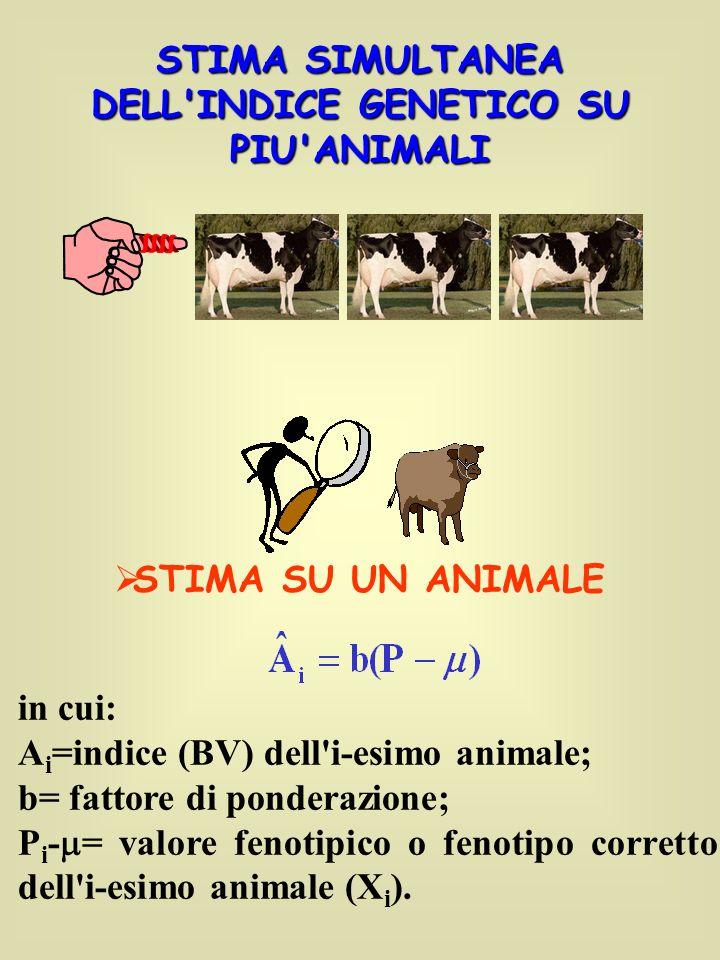 STIMA SIMULTANEA DELL INDICE GENETICO SU PIU ANIMALI