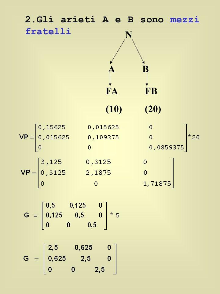 2.Gli arieti A e B sono mezzi fratelli