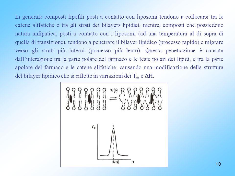 In generale composti lipofili posti a contatto con liposomi tendono a collocarsi tra le catene alifatiche o tra gli strati dei bilayers lipidici, mentre, composti che possiedono natura anfipatica, posti a contatto con i liposomi (ad una temperatura al di sopra di quella di transizione), tendono a penetrare il bilayer lipidico (processo rapido) e migrare verso gli strati più interni (processo più lento).