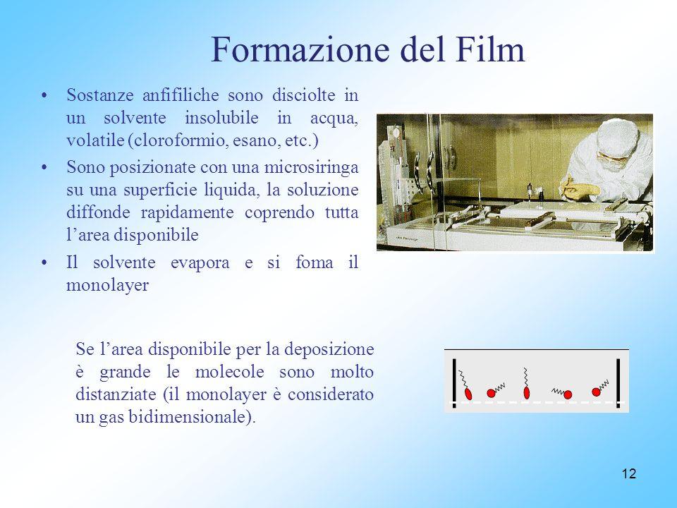 Formazione del Film Sostanze anfifiliche sono disciolte in un solvente insolubile in acqua, volatile (cloroformio, esano, etc.)