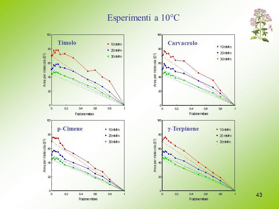 Esperimenti a 10°C Timolo Carvacrolo p-Cimene g-Terpinene
