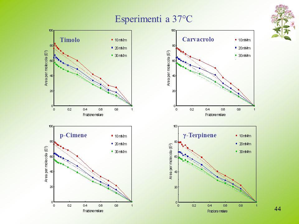Esperimenti a 37°C Timolo Carvacrolo p-Cimene g-Terpinene