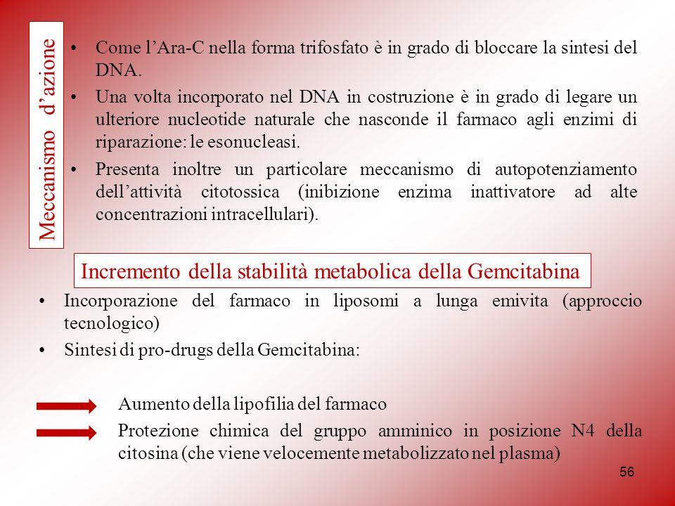 Incremento della stabilità metabolica della Gemcitabina