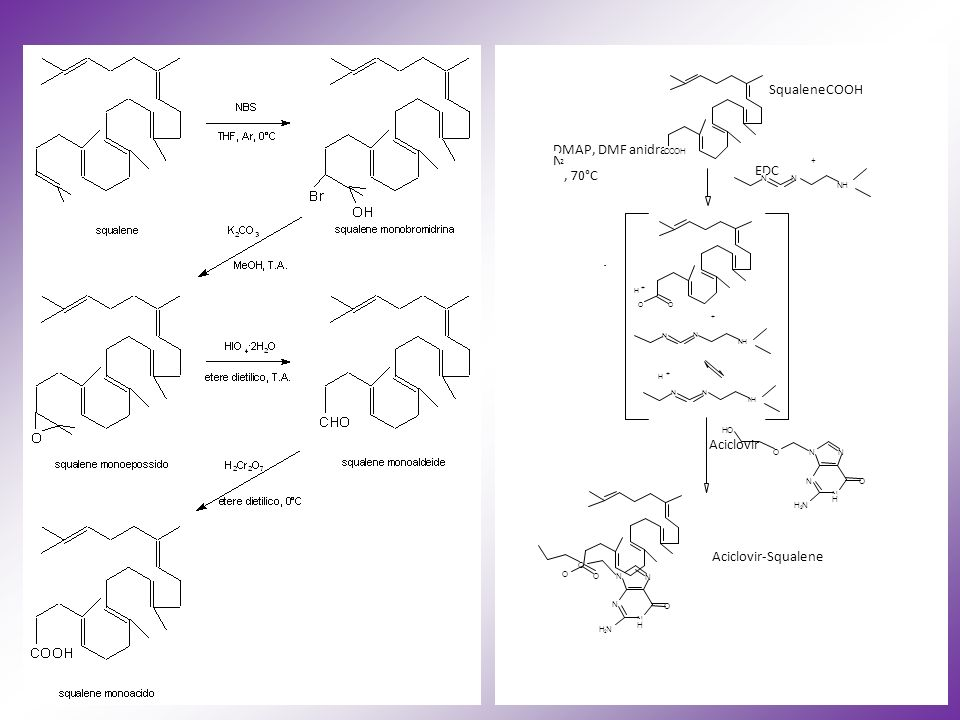 SqualeneCOOH DMAP, DMF anidra EDC , 70°C Aciclovir Aciclovir-Squalene