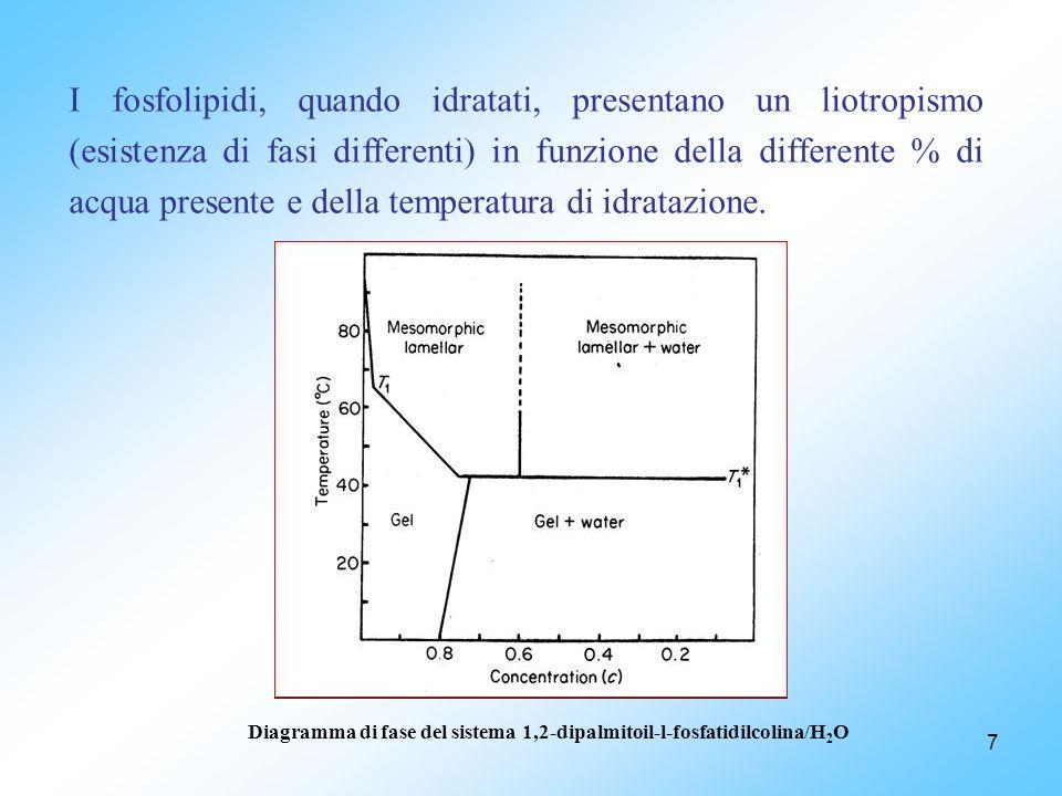 I fosfolipidi, quando idratati, presentano un liotropismo (esistenza di fasi differenti) in funzione della differente % di acqua presente e della temperatura di idratazione.