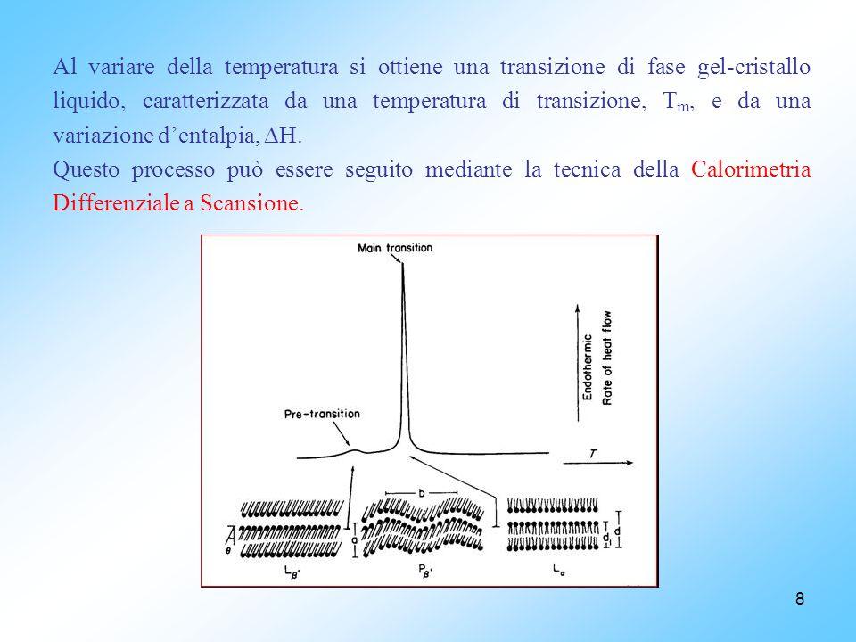 Al variare della temperatura si ottiene una transizione di fase gel-cristallo liquido, caratterizzata da una temperatura di transizione, Tm, e da una variazione d'entalpia, H.
