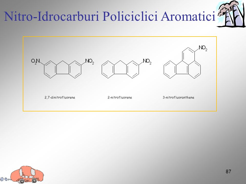 Nitro-Idrocarburi Policiclici Aromatici