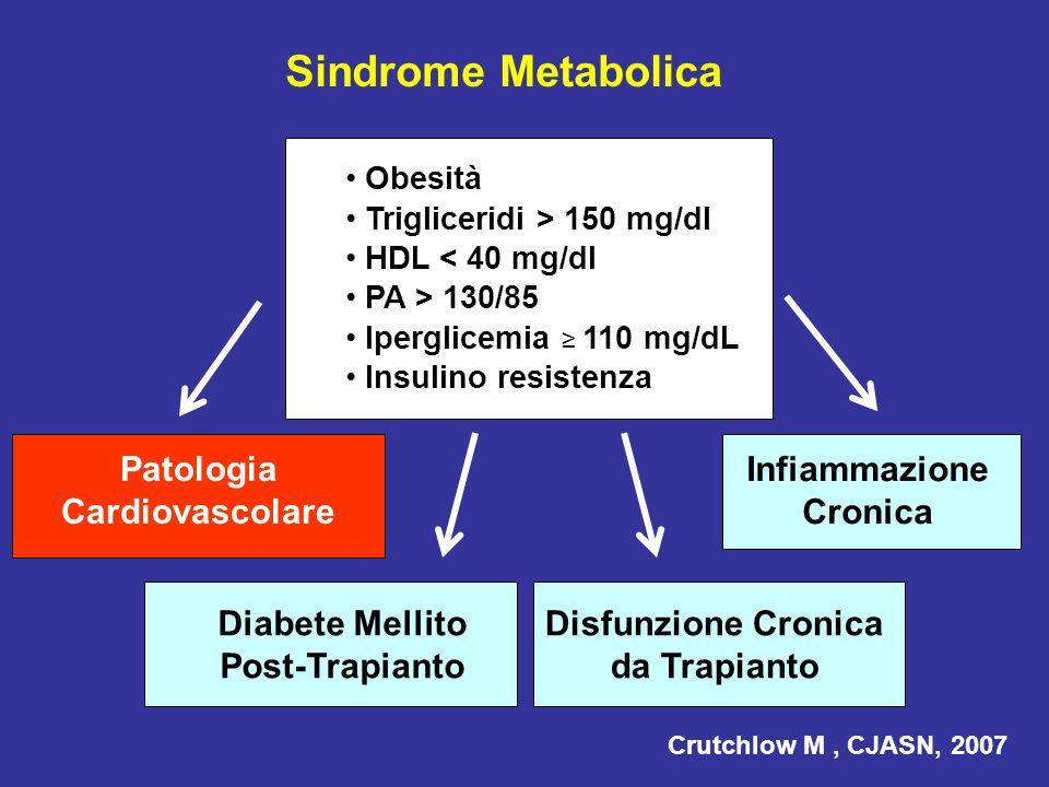 Sindrome Metabolica Patologia Cardiovascolare Infiammazione Cronica