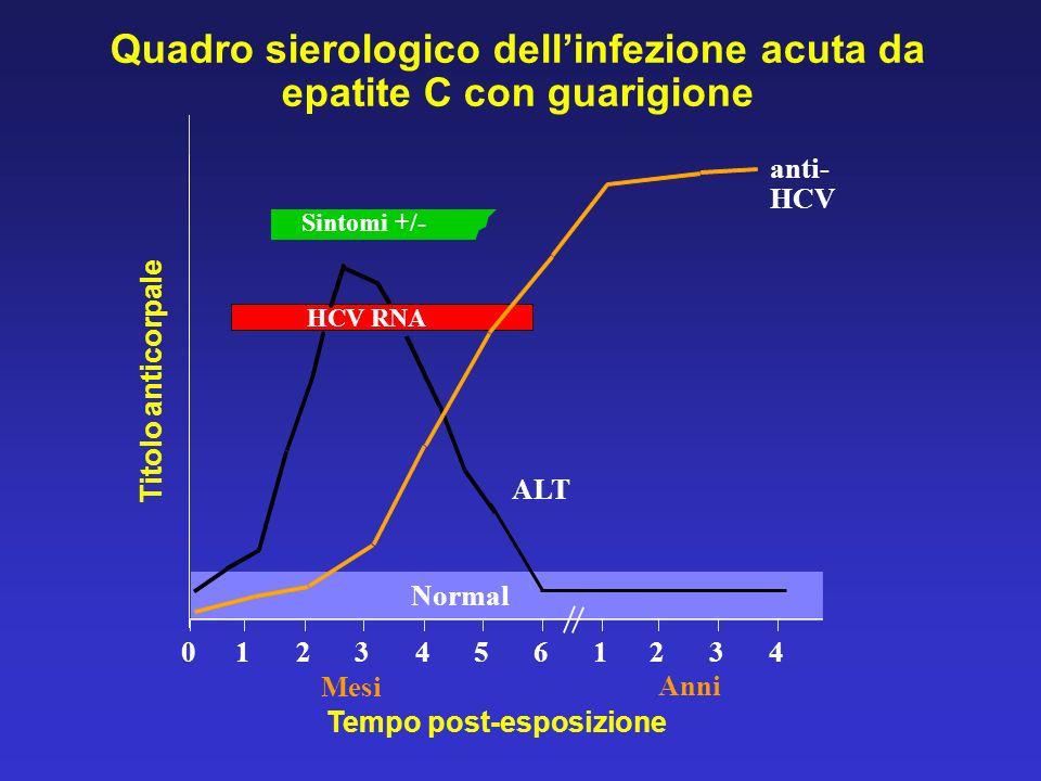 Quadro sierologico dell'infezione acuta da epatite C con guarigione