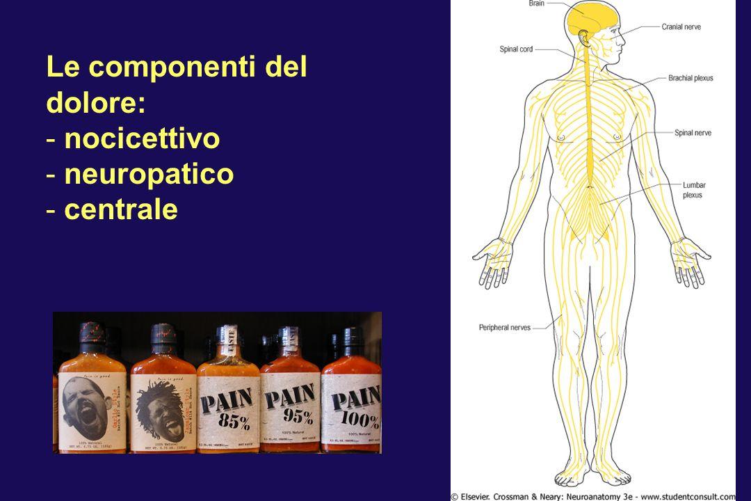 Le componenti del dolore: