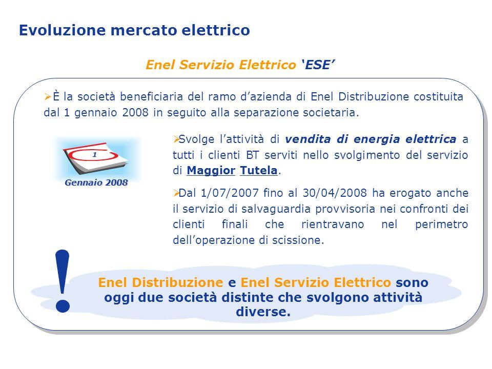 Enel Servizio Elettrico 'ESE'