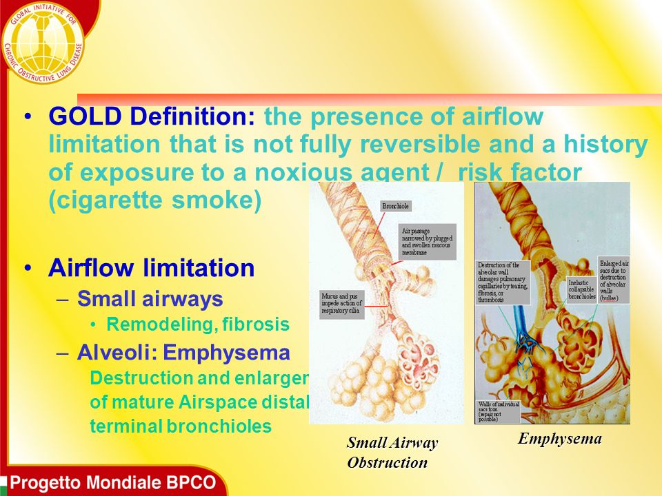 GOLD Definition: the presence of airflow limitation that is not fully reversible and a history of exposure to a noxious agent / risk factor (cigarette smoke)