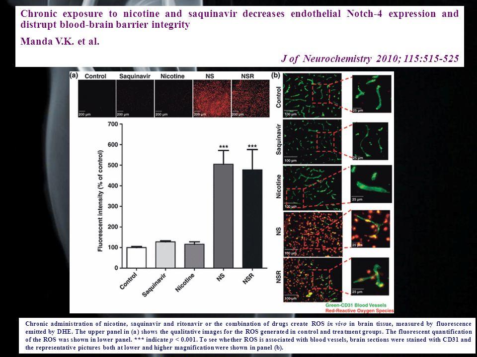 J of Neurochemistry 2010; 115:515-525