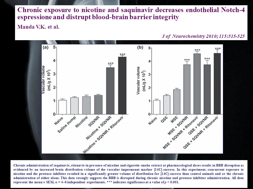 Chronic exposure to nicotine and saquinavir decreases endothelial Notch-4 espressione and distrupt blood-brain barrier integrity