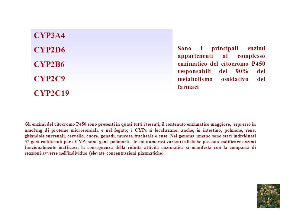CYP3A4 CYP2D6 CYP2B6 CYP2C9 CYP2C19