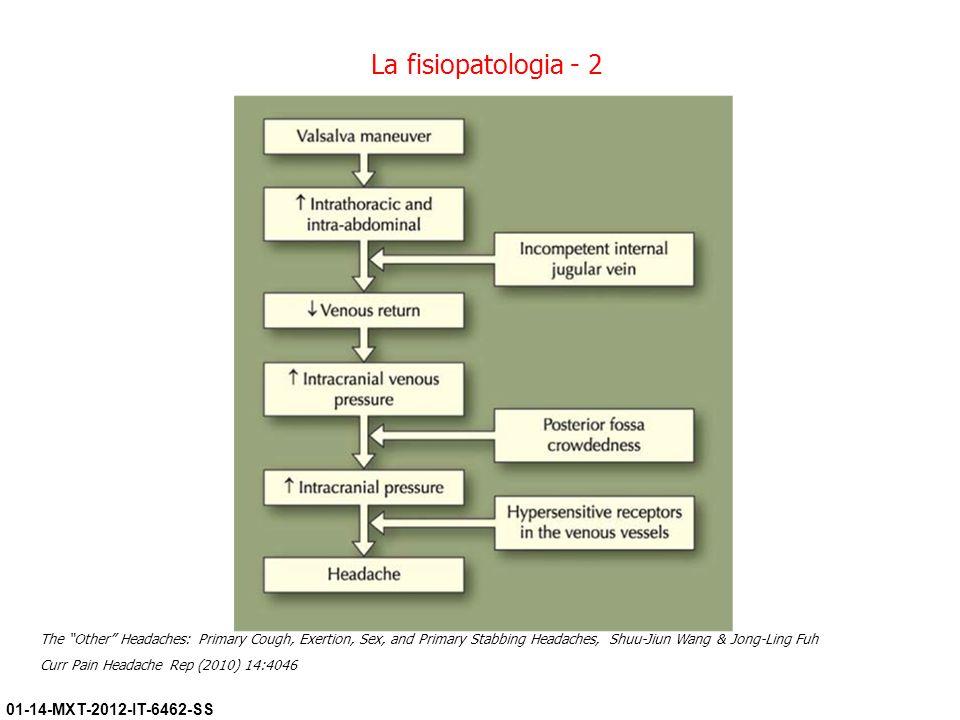 La fisiopatologia - 2