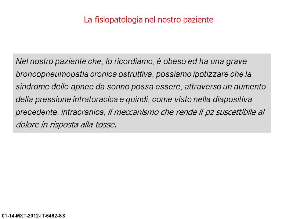 La fisiopatologia nel nostro paziente